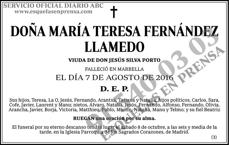 María Teresa Fernández Llamedo